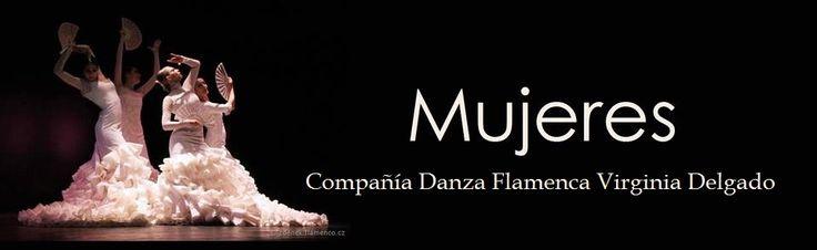 Flamenco dance project - Prague 2013 - 2014