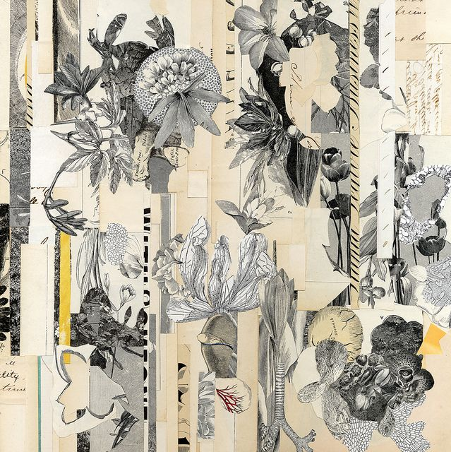 botanical collage by Valerie Roybal