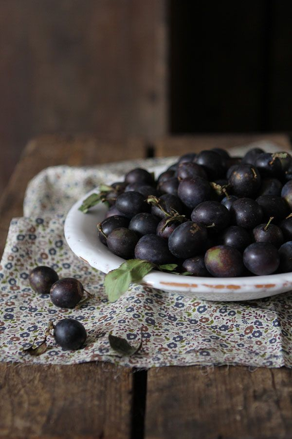 SLOE: The sloe or 'Prunus Spinosa' is a berry from the blackthorn. Sloes or blackthorns were planted around the countryside in the 16th and 17th century as hedges around the fields to keep the cattle in. The word 'sloe' comes from the Old English slāh, in Old High German slēha and in Middle Dutch sleuuwe.