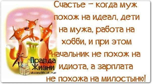 WCjQxv6wH_c.jpg (604×337)