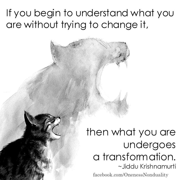 """If you begin to understand what you are without trying to change it, then what you are undergoes a transformation."" - Krishnamurti"