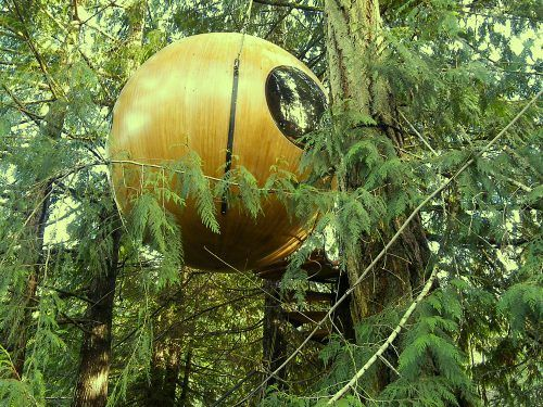 8 wild tree houses that you can rent in BC this summer