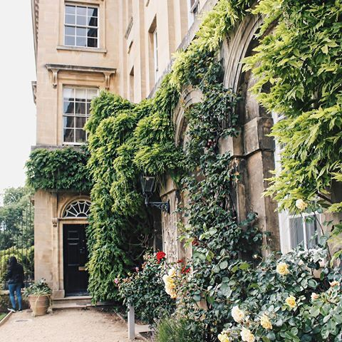 Ivy covered walls at Worcester College, Oxford University