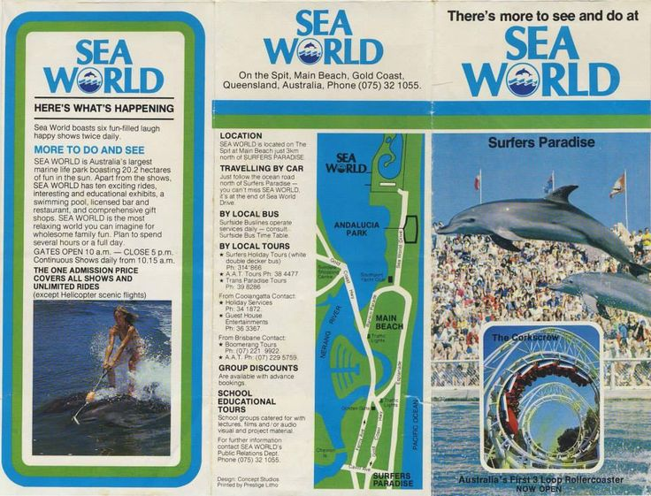 SEAWORLD - I remember collecting this map as we passed through the pay booth and filling overwhelmed with excitement.