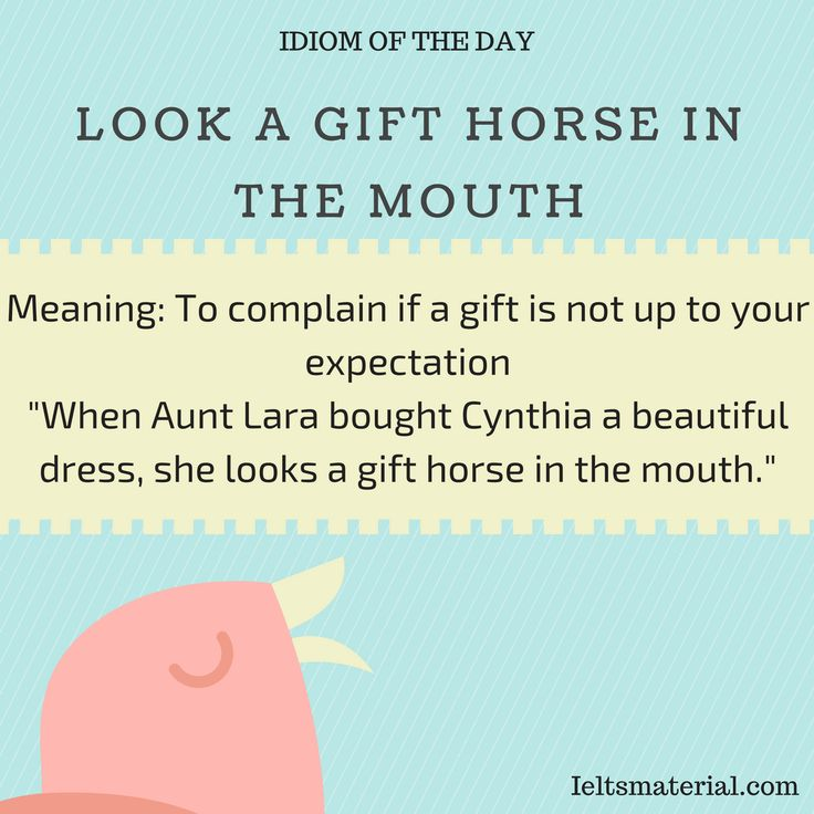 Look A Gift Horse In The Mouth – Idiom Of The Day For IELTS