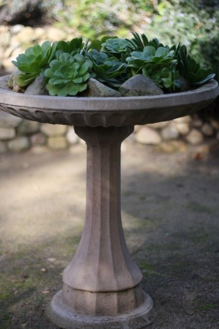 Best 25+ Bird Bath Planter Ideas On Pinterest