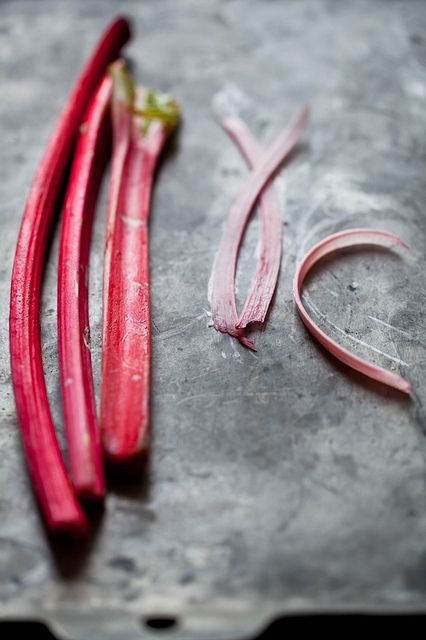 ... rhubarb food food rhubarb flickr see more by tartelette pinned from