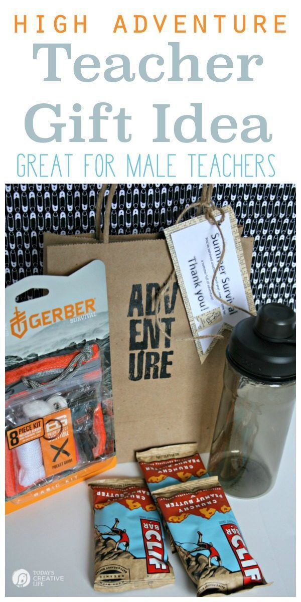 Best 25 male teachers ideas on pinterest gift for male teacher male teacher gift summer survival kit negle Image collections