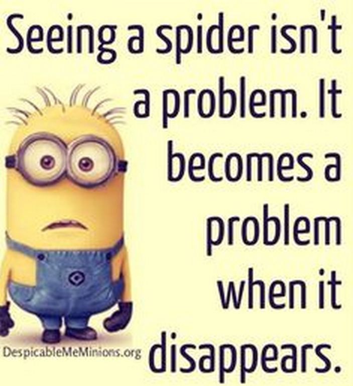 Today Amusing Minion photos with funny quotes (09:48:00 PM, Monday 12, October 2015 PDT) – 10 pics. This is very true!!!!!!