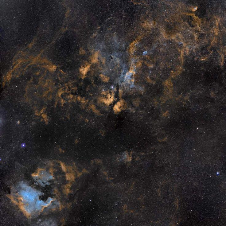 La constelación del Cisne es el hogar de varias nebulosas, que pueden ser apreciadas en esta imagen. Debajo de Deneb (la estrella brillante que hay en la parte izquierda de la imagen, en el centro) se pueden ver las nebulosas de Norteamérica y el Pelícano. Sadr, una estrella brillante que está en el centro de la imagen, se encuentra encima de la nebulosa de la Mariposa... #astronomia #ciencia