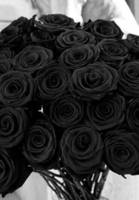 If you ever want to win my heart by me a bouquet of black roses.