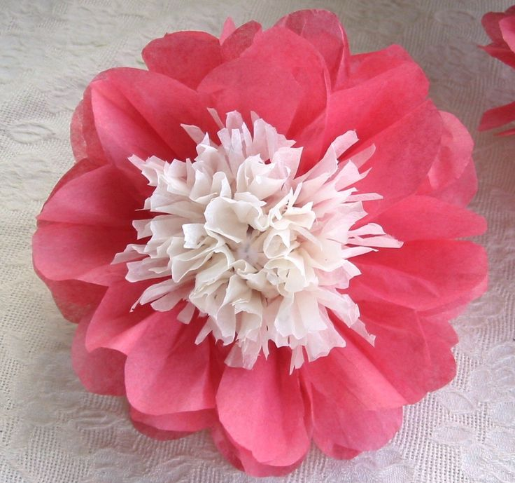 sale 12 Open Tissue Paper Flowers ala Japanese Anemone Peony. $36.00, via Etsy.