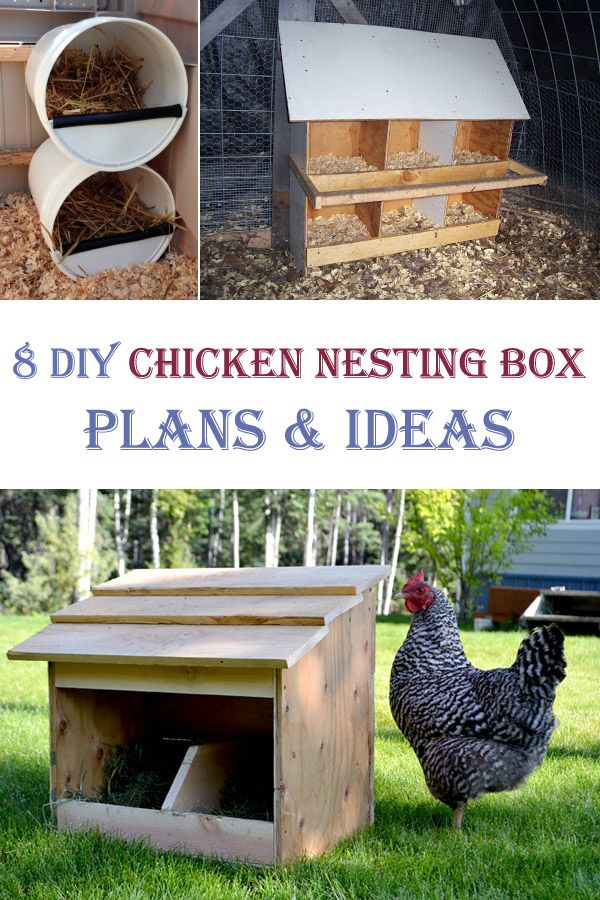8 DIY Chicken Nesting Box Plans and Ideas