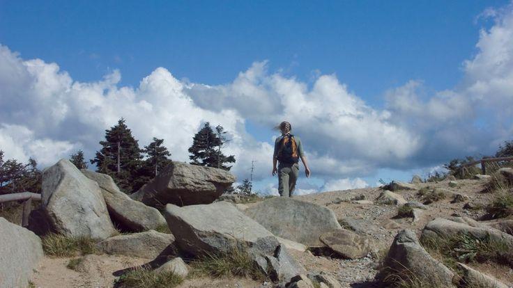 """Der """"Grand-Canyon"""" im Oberharz: Imposanter Blick über das Bodetal. Nach der Walpurgisnacht und den Festen rund um den Brocken, mögen wir die Wanderwege im Harz mit seiner nahezu unberührten Natur am liebsten!"""