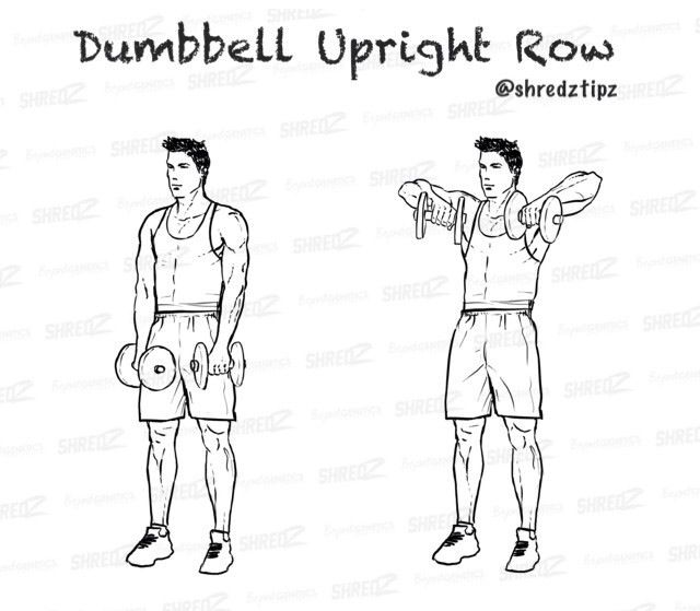 17 best images about dumbell workout on pinterest