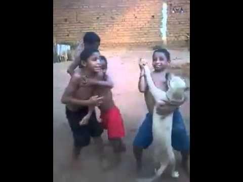 Alegria pura verdadeira. Meninos dançam com cachorro