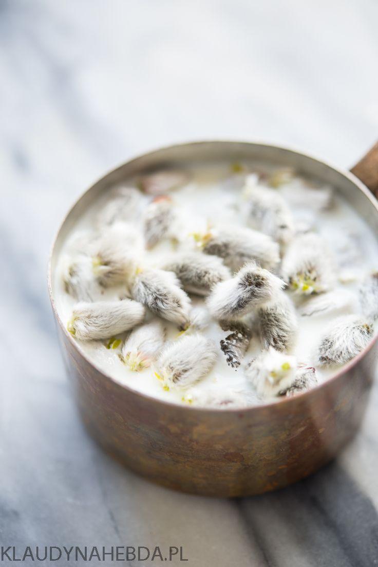 Herbata z bazi [przeziębienie/grypa/dzieci] | Klaudyna Hebda
