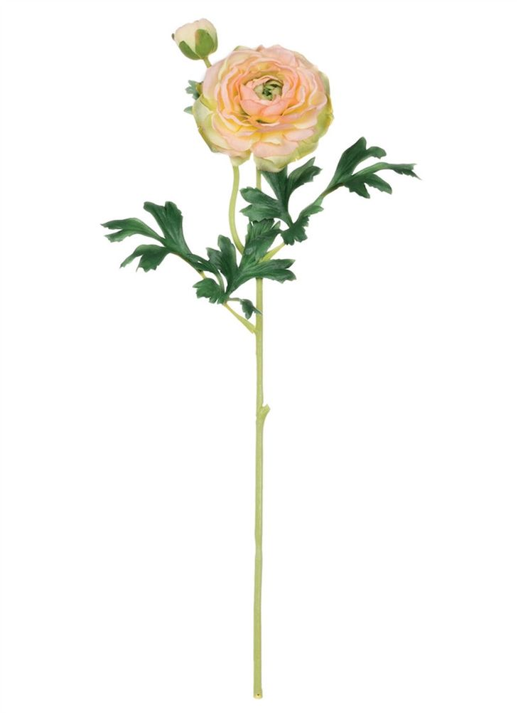 """Ranunculus Artificial Flower and Bud in Yellow Peach 3.5"""" Bloom x 17.5"""" Tall"""