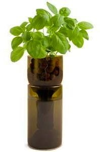Grow Bottle Upcycled Hydrogardens allow you to grow organic herbs on your windowsill in sustainable style.