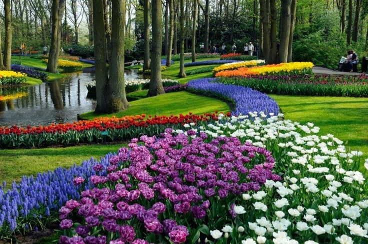 4* M/S BELLEJOUR ROMANTİK REN NEHRİ TURU Hollanda - Belçika 1.Gün İSTANBUL – AMSTERDAM /