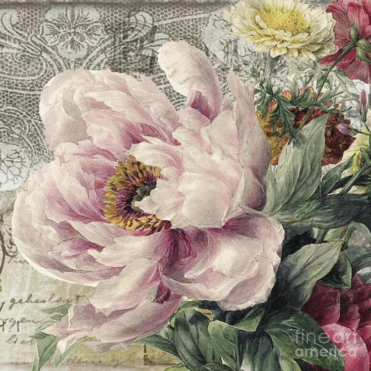 Peony Painting - Paris Peony by Mindy Sommers