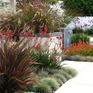 Landscape Design Ideas, Pictures, Remodels and Decor