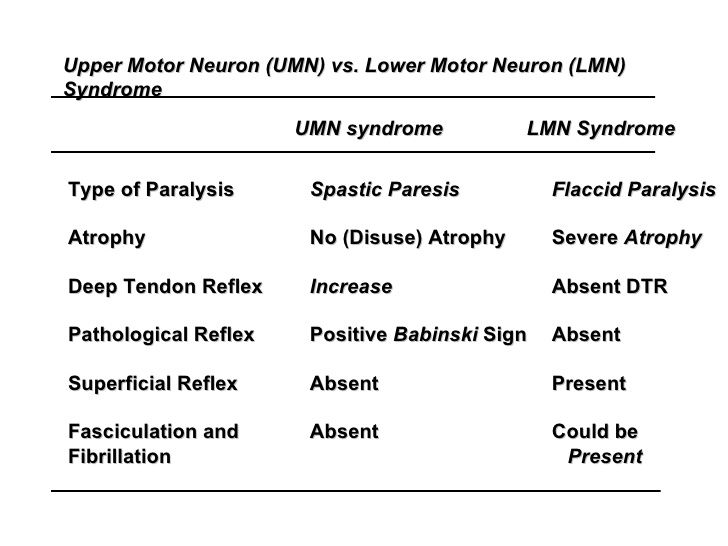 Upper motor neuron lesion vs lower motor neuron lesion What is lower motor neuron disease