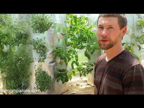Backyard aeroponics: self-sustaining farm for Wisconsin cold - YouTube