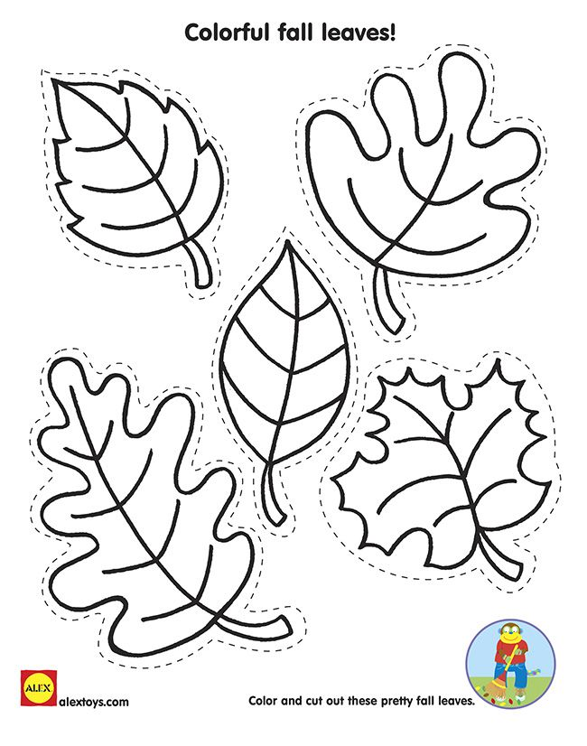 Cut and Color Fall Leaves with our Free Kids Fall Activity #Printable on Alextoys.com