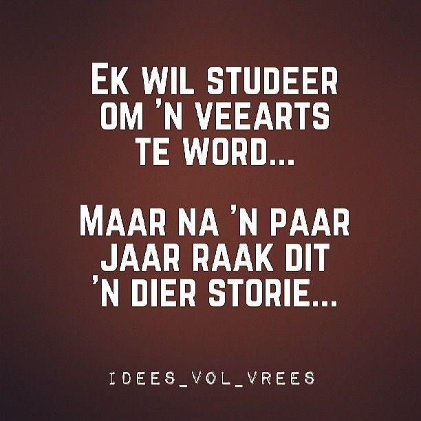 #study #veearts #ivv #jokes #snaaks #afrikaans #grap #ideesvolvrees