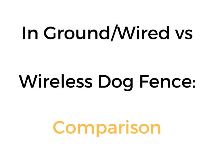 best 25  dog fence ideas on pinterest