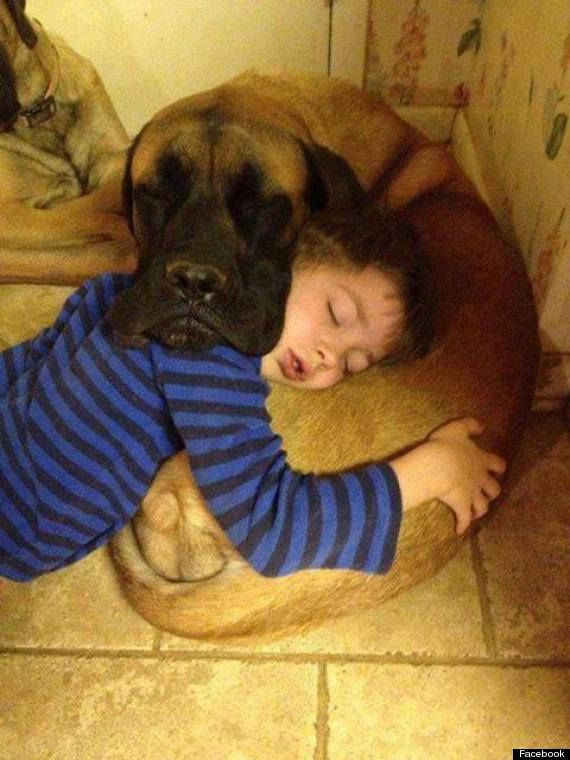 21 Reasons A Dog Is The Best Investment You Will Ever Make (PHOTOS)