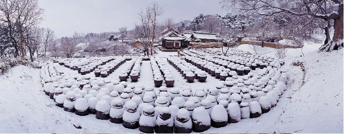 A traditional winter scene shows a field of urns and crocks, all storing food for the winter, on the terraces of a traditional home in Nonsan, Chungcheongnam-do.