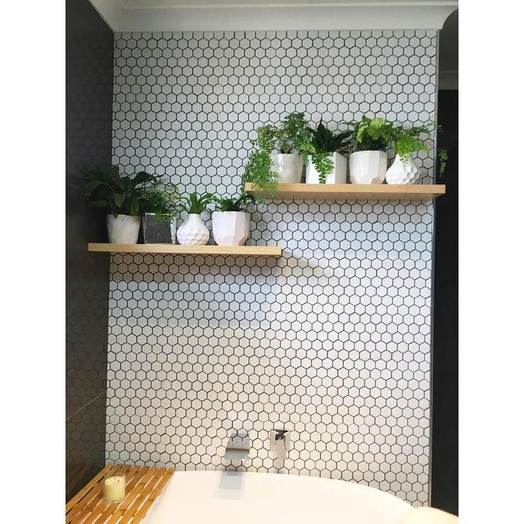 Oltre 25 fantastiche idee su piante da bagno su pinterest - Piante da bagno ...