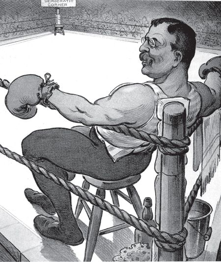 an analysis of theodore roosevelt as more than just the 26th president of the united states Theodore roosevelt, the 26th president of the united states of america  a  prosperous family like the roosevelts had a better than most people in that era.