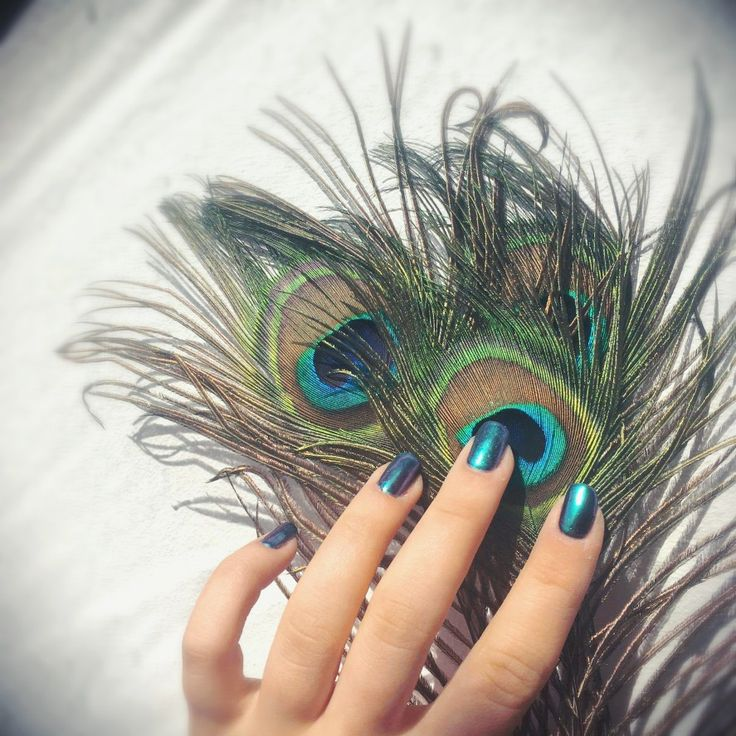 Peacock nails, just perfect 😍