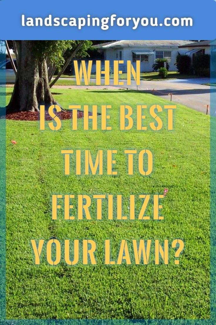The Tips You Need To Learn When To Fertilize Lawn Read More