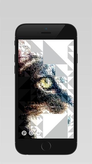 Pixl™ innoiz Inc. 제작 픽셀