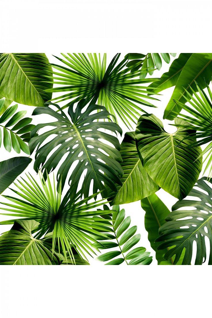 leaves wallpaper pattern - photo #33