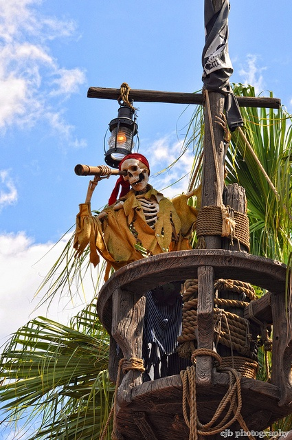 Walt Disney World  The Pirates Life for me!