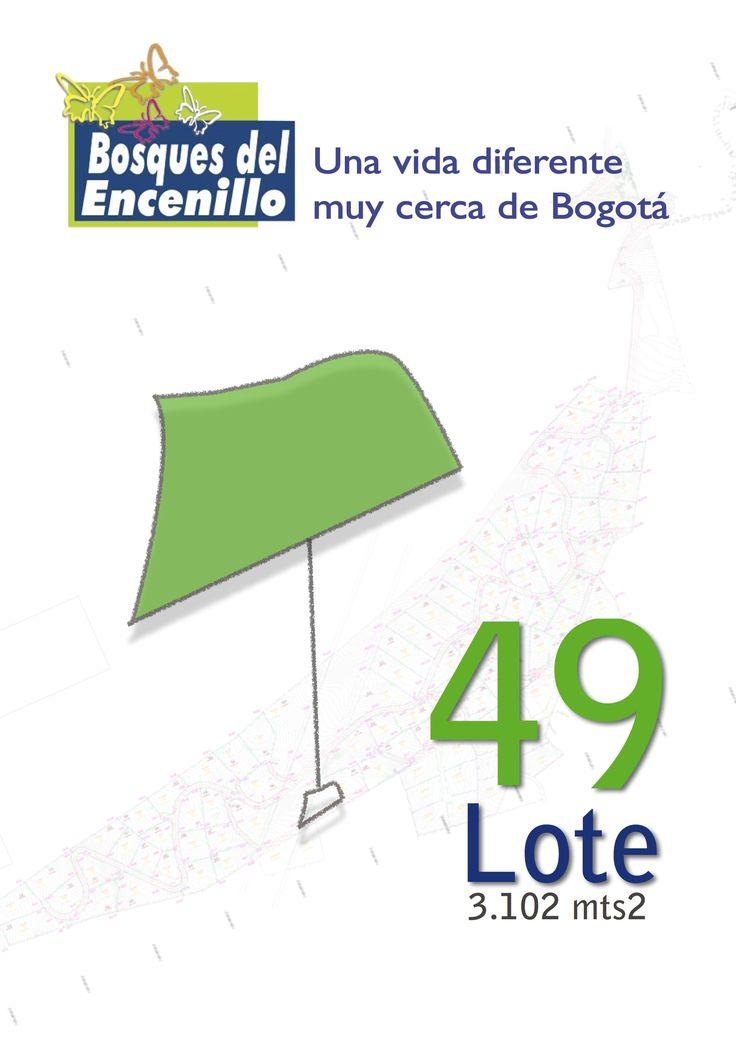 Lote 49  http://www.bosquesdelencenillo.com #ventaloteslacalera