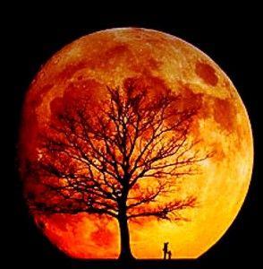 Luna roja: