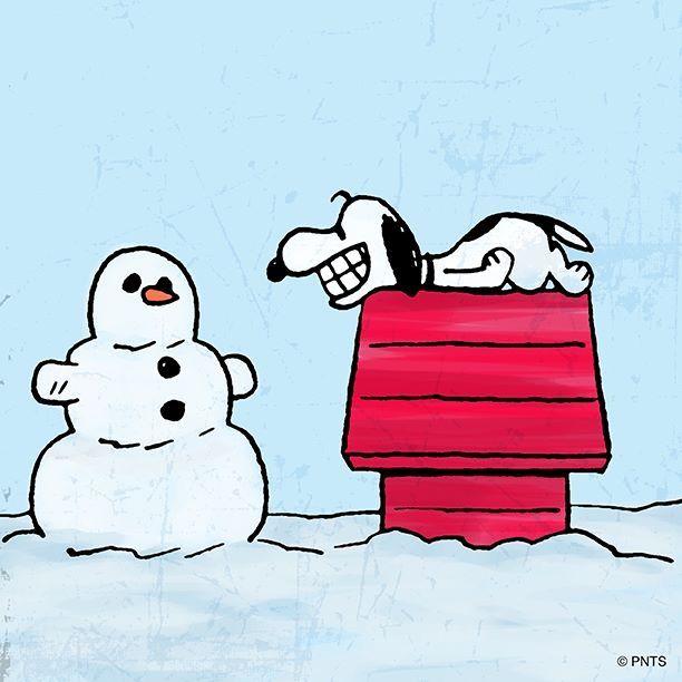 1000 bilder zu snoopy christmas winter auf pinterest. Black Bedroom Furniture Sets. Home Design Ideas