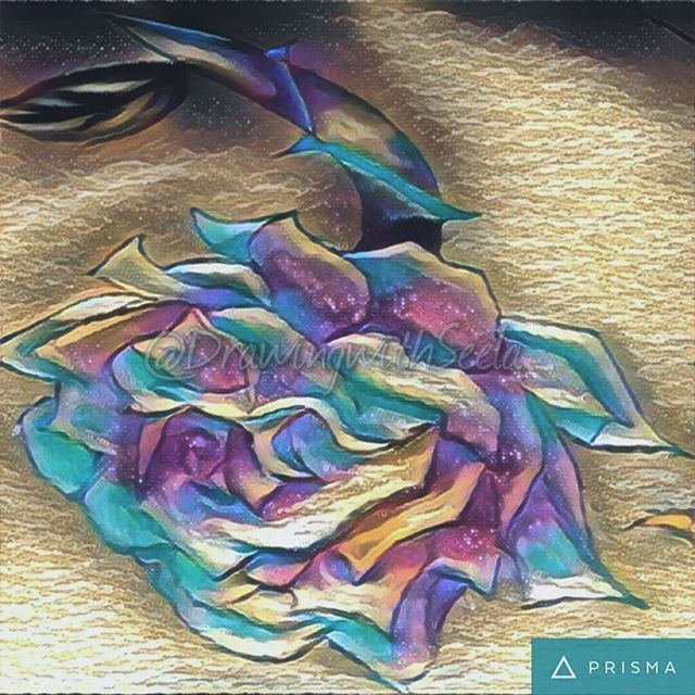 """When you bloom like a Rose""🌹❤💛💚💙💜🌈 #edit #newdesign #rose #newstuff #artwork #colour #art #artist #soul #design #skull #roses #tattoo #tattoodesign #instaart #instaartist #instalove #instagood #drawing #instago #instagram #prisma #work #sundaypost #sundayblues #sunday #dreamy #insta #light #dark"