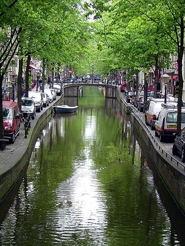 The canals in Amsterdam are gorgeous. Such a beautiful and serence city.