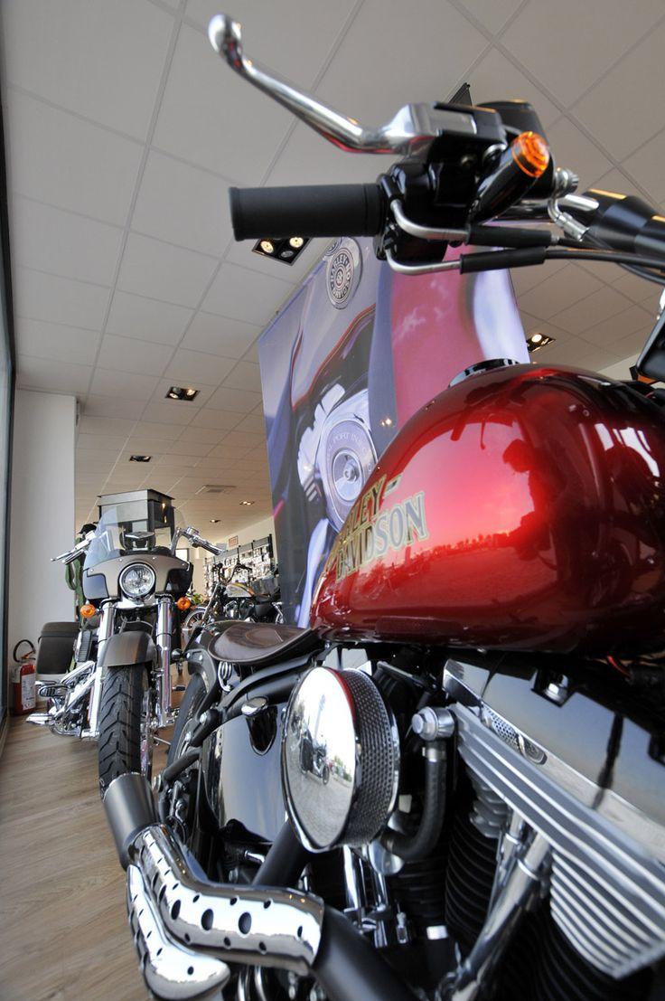 Harley davidson originals nuovo programma 2013 per l usato
