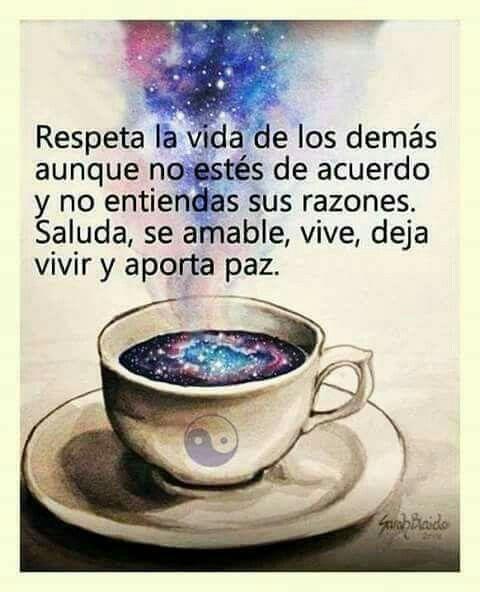 Respeta la vida de los demás*