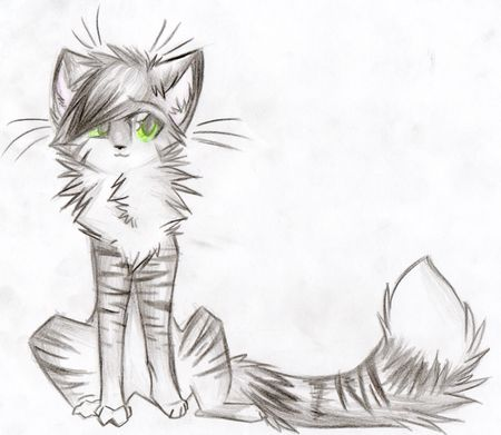 Snowflurry (she-cat) queen of birchclan different and kind mate:amberriver