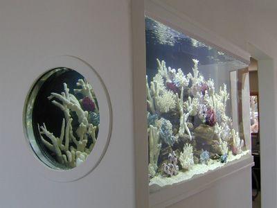 500 Gallon ' L' Shaped Marine Fish Tank, Aquarium Design, Marine Aquariums and Coral Reef Aquarium Tank, Stand, Canopy, and Aquarium Filter System
