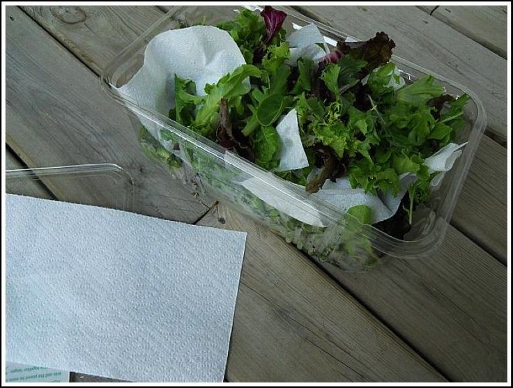Las capas de hojas con papel de cocina, te servirán para disfrutar de deliciosas ensaladas durante toda la semana.